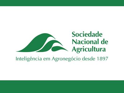 Trigo: Brasil deve importar seis milhões de toneladas da Argentina