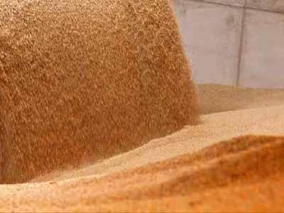 Isenção de tarifa de importação para trigo só deve ser discutida em 2018, diz Camex