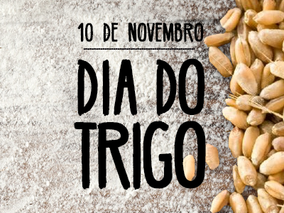 10 de novembro: Dia do Trigo, grão que é benéfico à saúde