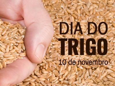 Em comemoração à data, aprenda sobre os diferentes tipos de farinha