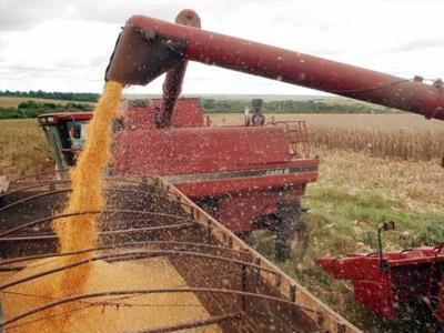 Safra de grãos de 2017 deve crescer 21,8%, estima IBGE
