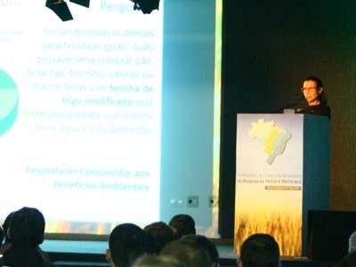 Caminhos para o trigo nacional: inovação tecnológica e aproximação com a indústria