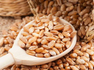 Governo confirma cenário positivo para grãos