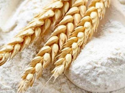 Produção de farinha de trigo cresce 10% na Argentina