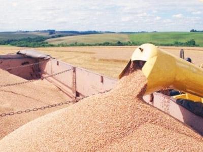 Safra de trigo russa deve bater novo recorde